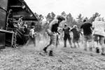 Ultra Chaos Piknik 2015 - The Fialky - Fot. Marcin Gul