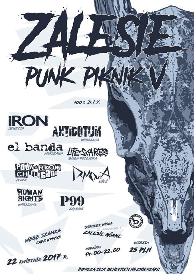 ev_punk_piknik_zalesie_2017